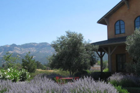 Carter Cellars at Envy Estate Winery